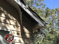 Raccoons caused the soffit panel to collapse and hang from the soffit at a house in Mount Airy Georgia