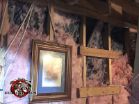 Raccoons tore most of the insulation off the wall in the attic of a house in Athens Georgia