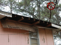 Raccoons easily got into a cabin in Athens Georgia because the soffit panels on the rear of the cabin are falling off the soffit