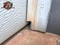 Norway rat chewed away part of the garage door frame in an attempt to get into a garage in Athens Georgia