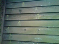 Carpenter bee stains on the outside of a home